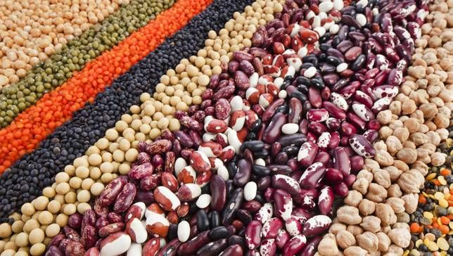 Beans Has Tons of Health Benefits