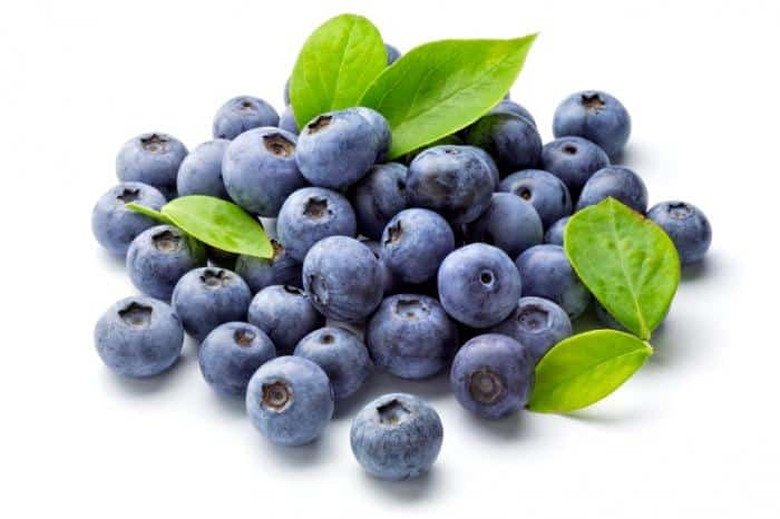 Blueberries Lowers Cholesterol