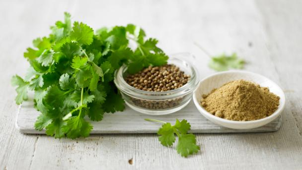Can Coriander help Lower Cholesterol?