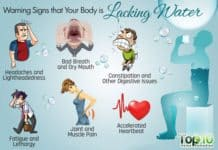Drink Water to Live a Healthier Lifestyle