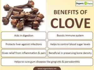 clove blood sugar, liver, bone density, inflammation, infection digestion, gum disease