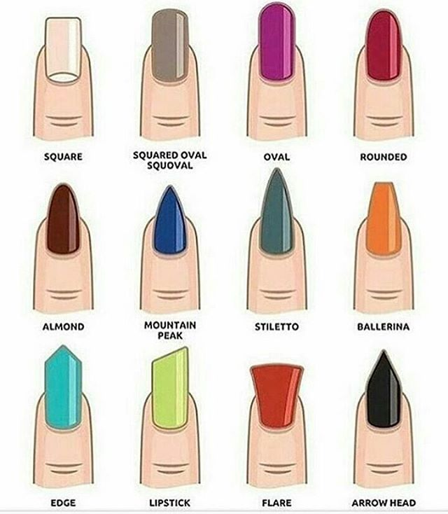 Your guide to 12 nail shapes - Your One Stop Guide To 12 Different Nail Shapes