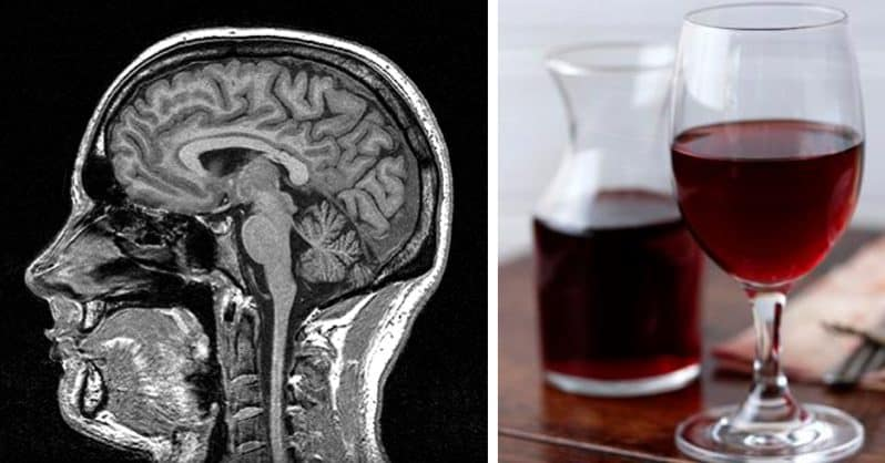 red wine and brain function - red wine and memory loss - red wine benefits for brain